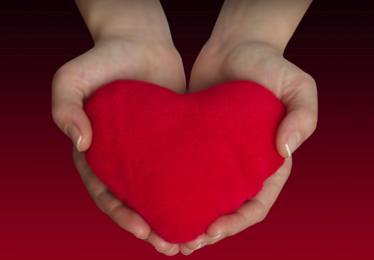 Серце в руках